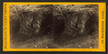 """Column of Hercules."", from Robert N. Dennis collection of stereoscopic views 3.png"