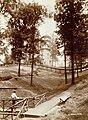 """Creve Coeur Lake."" (View looking across park toward the observation tower).jpg"