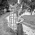 """""""Rebrank"""" za steljo, Zadlog 1959.jpg"""