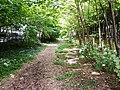 """""""Sentier nature"""" sur l'ancienne voie ferrée - panoramio.jpg"""