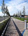 """The Promenade"" , Claycross (6158400570).jpg"