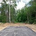 Автомобильная дорога Котлас-Сыктывкар около д.Нырма (6).jpg