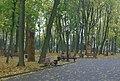 Брянск Парк А К Толстого (осень - фрагмент).jpg