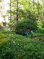 Дети в Саду Травникова.jpg