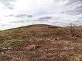 Март 2015 - panoramio (1).jpg