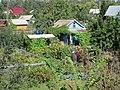 Райские сады на Земле^ (Путеец-2) - panoramio.jpg