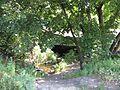 Речушечка - panoramio.jpg