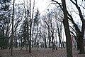 Тернопіль, Старий парк, 61-101-5006.jpg