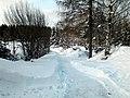 Тропинка. Фото Виктора Белоусова. - panoramio.jpg