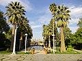 باغ عفیف آباد.1.jpg