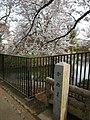 かぬま - panoramio.jpg