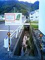 中の谷沢 - panoramio.jpg