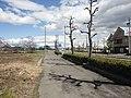 国道155号 - panoramio (7).jpg