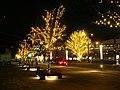 夜の帯広駅(Night of Obihiro Sta.) - panoramio.jpg