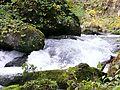 奧入瀨川 Oirase River - panoramio (2).jpg