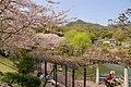 府中公園 Fuchu park - panoramio.jpg