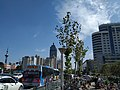 龙江地铁站附近街景.jpg