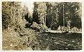 -IDAHO-B-0182- Idaho river (28091811130).jpg