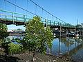 0060jfDaang Fish Bridge Poblacion Orion Bataanfvf 05.JPG