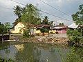 01873jfPinagbarilan Cantulinan Irrigation Baliuag Bulacan Dikes Roadfvf 17.JPG