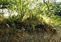 04860 Torpet Solhyllan.jpg