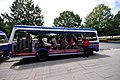 12-07-15-arlington-friedfhof-RalfR-007.jpg