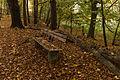 15-11-01-Kaninchenwerder-RalfR-WMA 3303.jpg