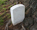 1864 grave consumed by tree - Arlington National Cemetery - 2011.JPG