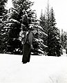 1958. W.J. Buckhorn packing out limb and bole samples to determine overwintering spruce budworm populations prior to 1958 spray project. Sumpter, Oregon. (33397974772).jpg
