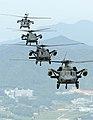 2010.6.11 육군항작사 2여단 전술비행 (7445957068).jpg