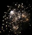 2010 07 14 bastille day fireworks 056 (4838873123).jpg