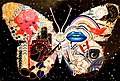 2012-366-159 Cosmic Butterfly (7165362993).jpg