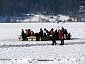 2012 'Seegfrörni' - Türlersee - Hausen am Albis 2012-02-18 12-41-38 (SX230).jpg