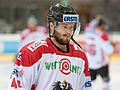 20150207 1759 Ice Hockey AUT SVK 9564.jpg