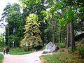 211. Vyborg. park Monrepos.JPG