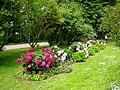 2156. Pushkin. Private garden in Catherine Park.jpg