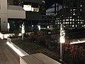 221 Main Street Terrace - Night View - View of Bay Bridge.jpg
