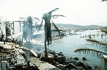 Photograph of trees, buildings, and marina structures damaged by the hurricane