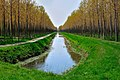 34079 Staranzano, Province of Gorizia, Italy - panoramio.jpg