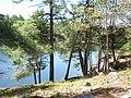 76 Minow Lake, Nanabush Trail. Petroglyph Provincial Park.jpg