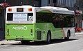 ACTION - BUS 457 - Custom Coaches 'CB60' Evo II bodied MAN 18.320 (Euro V).jpg