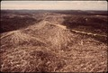 A LARGE AREA OF SLASH REMAINS FOLLOWING LOGGING OPERATIONS BY THE U.S. BUREAU OF INDIAN AFFAIRS. THE UNCLEANED AREAS... - NARA - 545143.tif