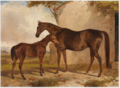 A Mare and Foal.PNG