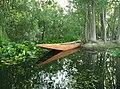A canoe on the creek.jpg