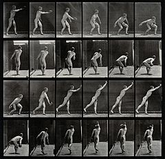 A male discus thrower. Photogravure after Eadweard Muybridge Wellcome V0048671.jpg
