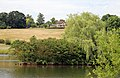 A pond island with willow westwards outside the Woodland Trust wood Theydon Bois Essex England.JPG