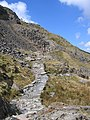 A walk up the Pyg track - steep ground ahead - geograph.org.uk - 770024.jpg