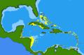 Acanthemblemaria spinosa range.png