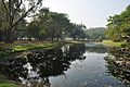 Acharya Jagadish Chandra Bose Indian Botanic Garden - Howrah 2011-01-08 9774.JPG
