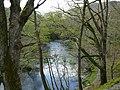 Afon Gwy - River Wye - geograph.org.uk - 1282597.jpg